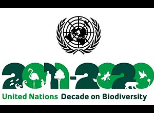 APSCC partners with 2011-2020 UN decade on Biodiversity