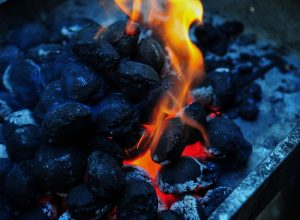 Biomass briquettes - an alternative to fossil fuels